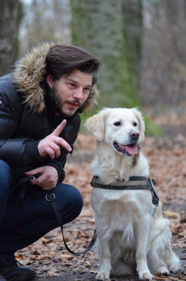entrenar y adiestrar a tu perro