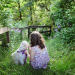 Razas de perros ideales para familias con niños