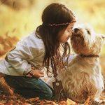 es malo besar a los perros