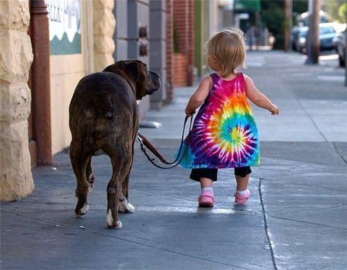 Qué más me aconsejais si mi perro tira de la correa