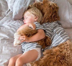 reagan y buddy siesta