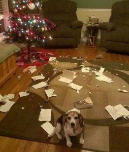 esto feliz navidad