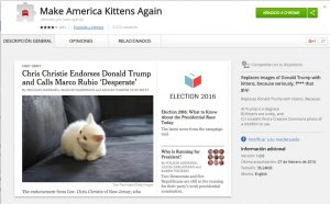 Gatitos por donald trump