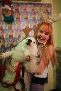foto navidad perro