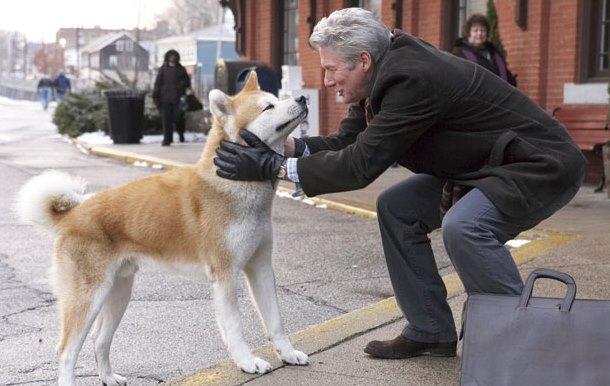 Cuáles son los mejores perros para personas mayore