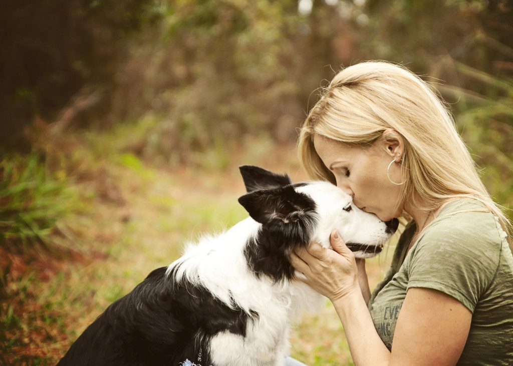 Razones para hablar con tu perro