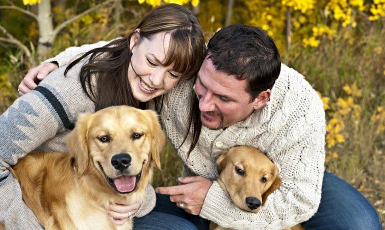 5 enfermedades que transmiten los perros a las personas