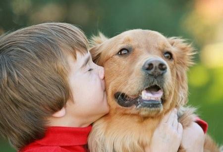 Agresividad y problemas de conducta canina
