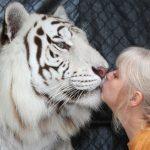 mujer vive con tigres