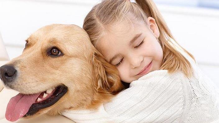 Aspectos básicos para entender a tu perro