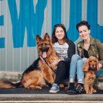 brewdog ofrece semana libre