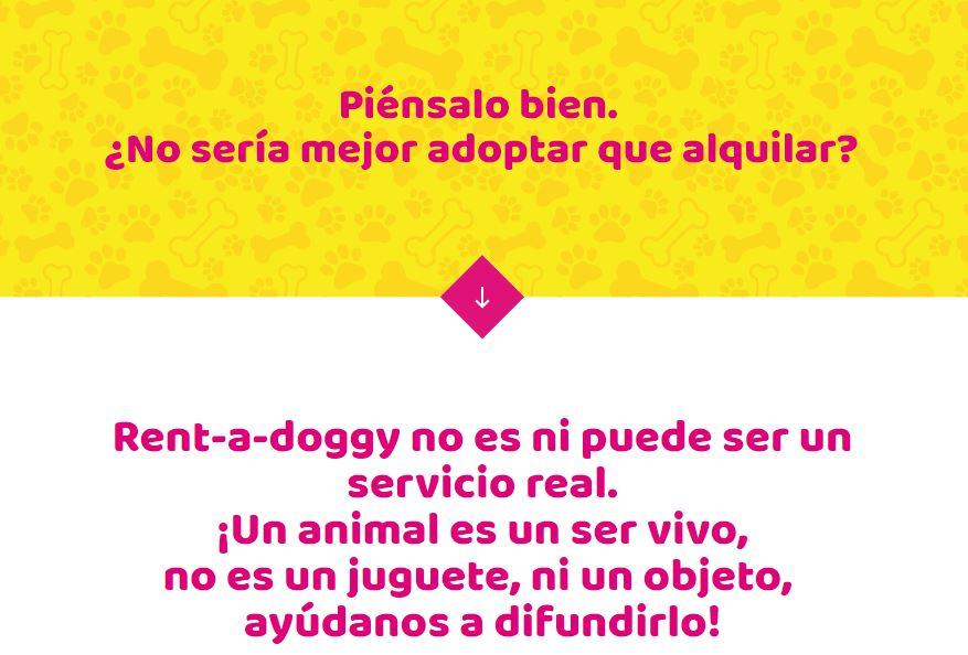 la web para alquilar un perro