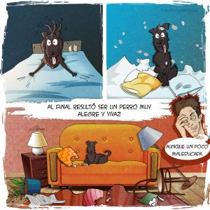 comic cinco