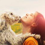 Cómo entender a tu perro