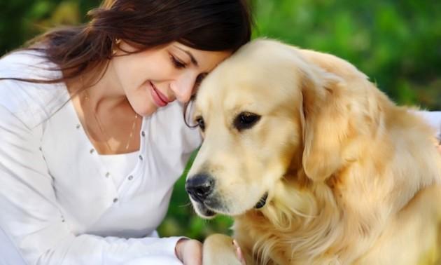 Consejos para entender a tu perro