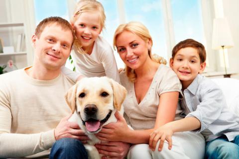 Cuáles son las 5 enfermedades que transmiten los perros a las personas