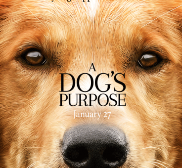 portada pelicula dogs purpose