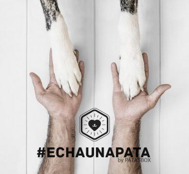 echaunapata llega a las redes sociales