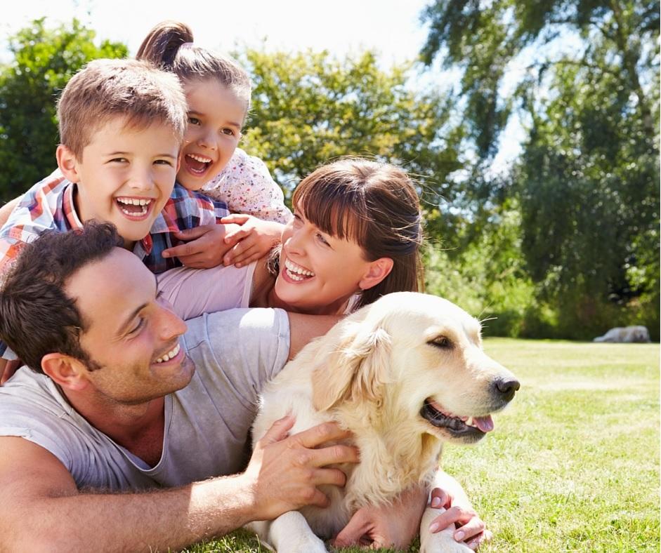Qué hago para prevenir las enfermedades que transmiten los perros a las personas
