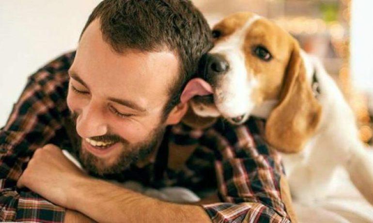 Consejos para mejorar la convivencia con tu mascota