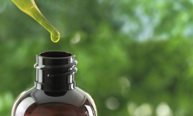 Qué es el aceite de árbol del té