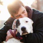 A los perros les gustan los abrazos