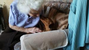 anciana y perro