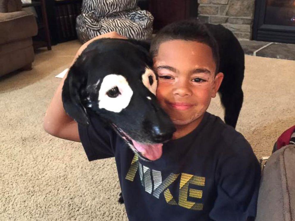 niño y perro con vitiligo