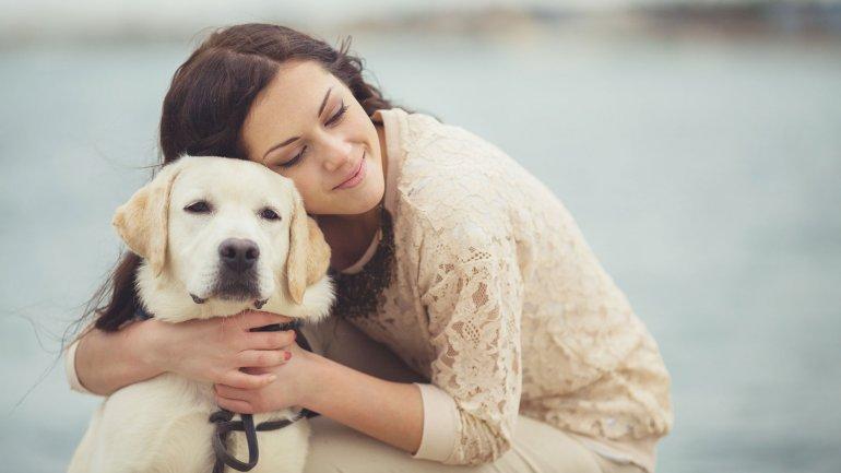 Cómo puedo saber si a mi perro le gustan los abrazos