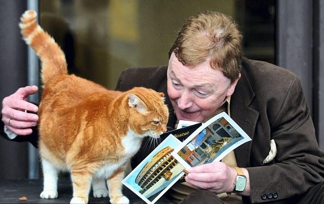 la gata que vive en el aeropuerto de Manchester