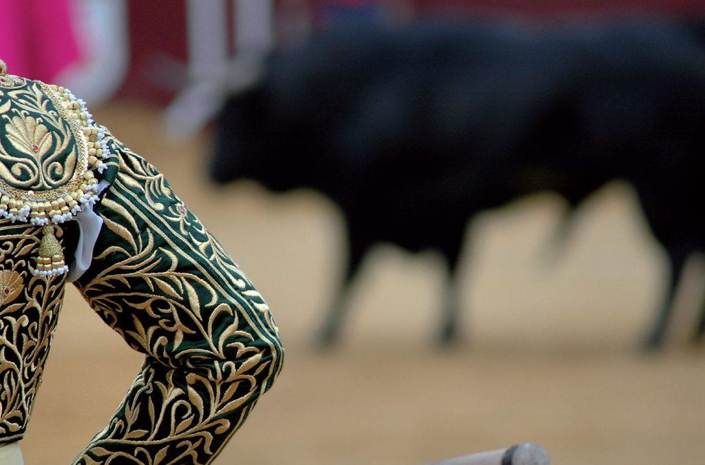 Pacma recoge firmas contra bajada de IVA a los toros