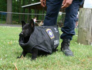 traje perro policia