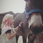 Descubre al burro que salvó a una niña con parálisis cerebral