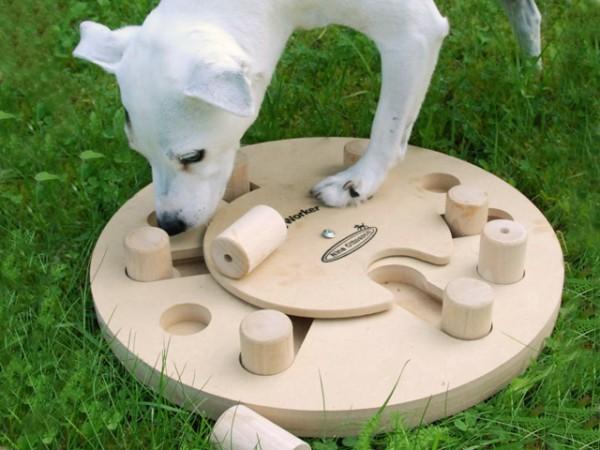 Juegos que fomentan la inteligencia de tu mascota