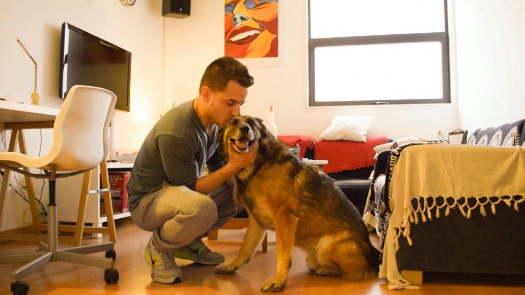adoptar a un perro con problemas de salud