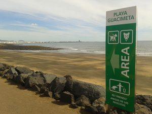 playa de la guacimeta