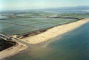 playa delta del ebro