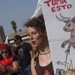 se manifiestan en Sevilla en contra de la tauromaquia