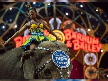 Adiós a uno de los circos más antiguos del mundo por maltrato animal