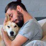 Cómo ganarse la confianza de un perro que ya te conoce