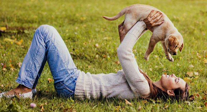 Consejos para que tu perro confíe en ti