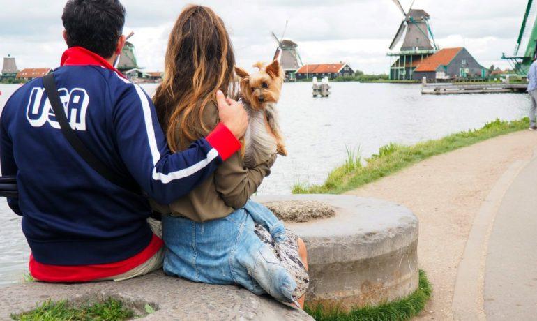 Las 5 ciudades más dogfriendly del mundo