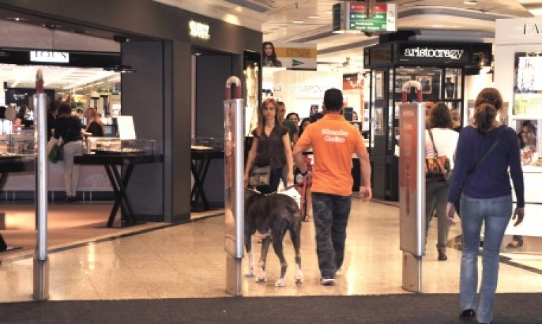 Tiendas de ropa en las que puedes entrar con tu perro