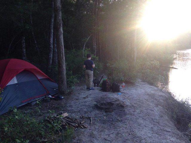 De una acampada a un rescate de gatitos