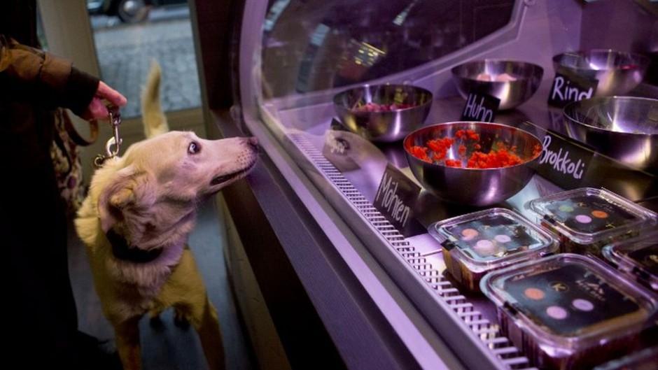 ciudades más dogfriendly del mundo Berlin