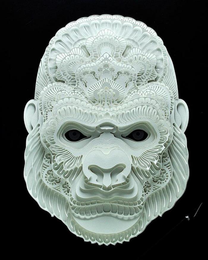 gorila patrick cabral