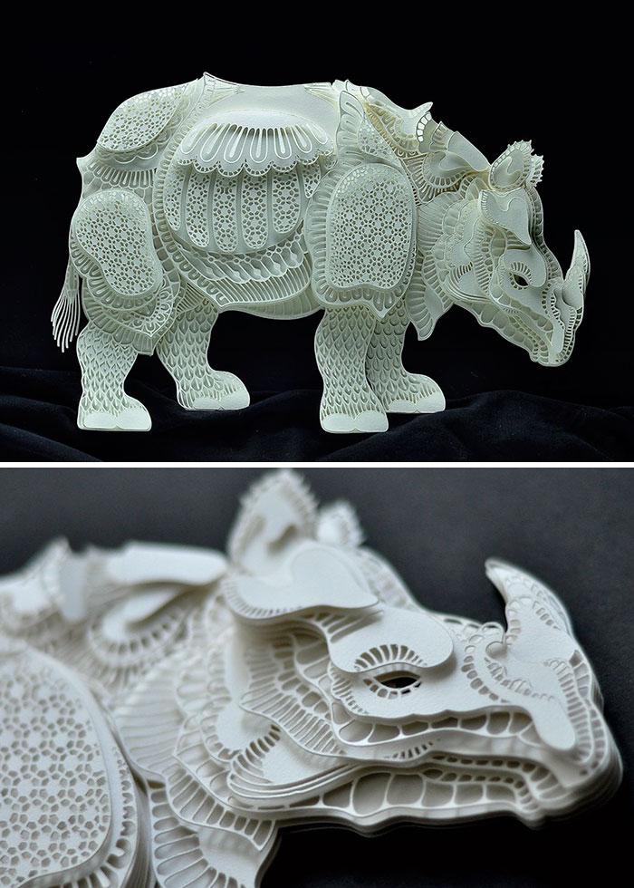 rinoceronte patrick cabral