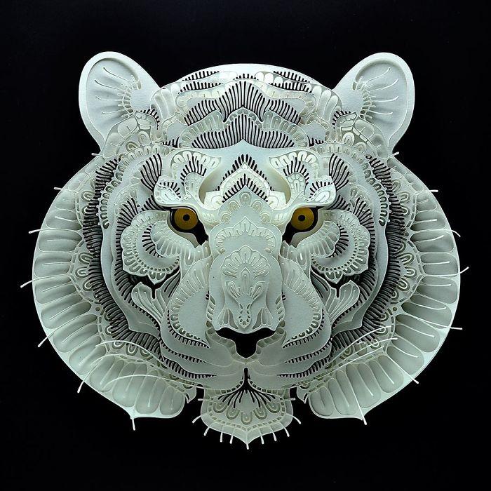tigre patrick cabral