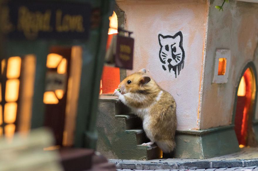 Alguien ha creado una ciudad en miniatura para hámsters
