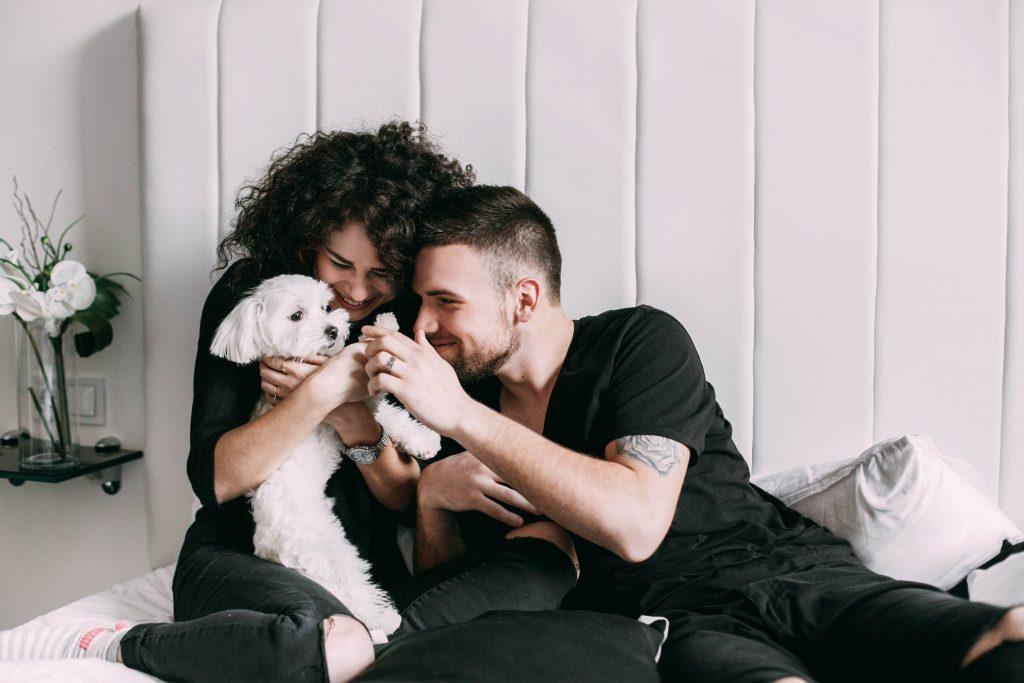 Los madrileños necesitarán autorización para tener más de 5 mascotas en casa